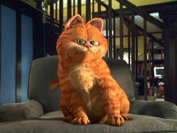 """为什么部分杨超越粉丝称呼杨超越养的猫""""小橘子""""为""""丑橘""""?插图6"""
