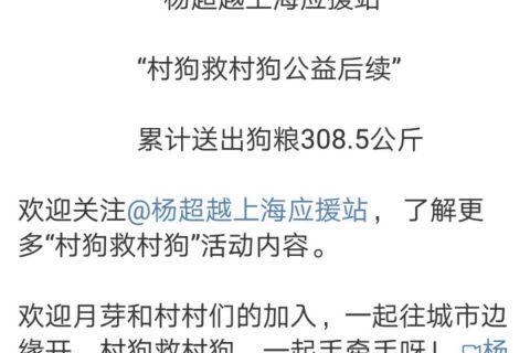 杨超越粉丝回复:你看到过哪些很有意思的粉丝群体?
